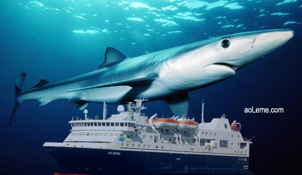 Tanque-dos-Tubarões